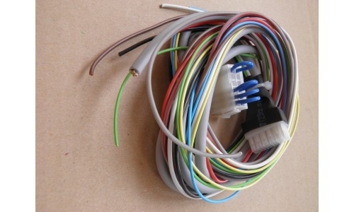 Wiring with a plug sHmel